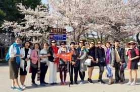 Rực rỡ những con đường hoa xuân Seoul