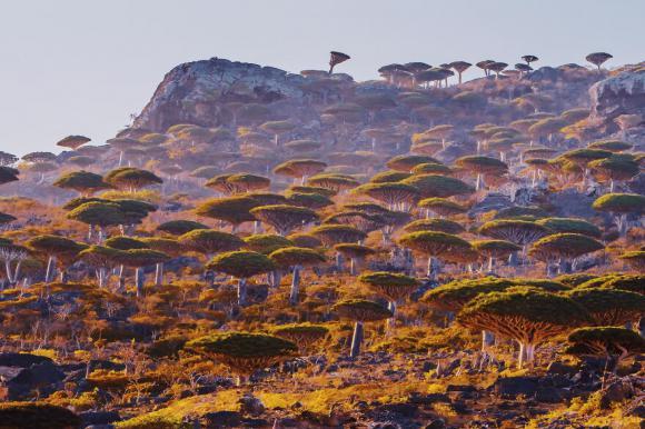 Hòn đảo ở Ấn Độ Dương được ví như vùng đất ngoài hành tinh