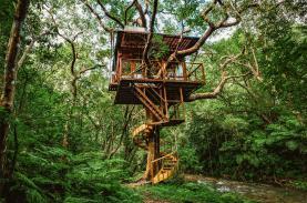 Giới nhà giàu bỏ hàng tỉ đồng xây nhà trên cây ở như người rừng