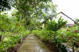 Trở về thiên nhiên Mekong Ecolodge