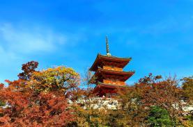 TST tourist giới thiệu tour mùa thu giá ưu đãi