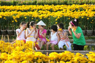 Tour Tết Canh Tý
