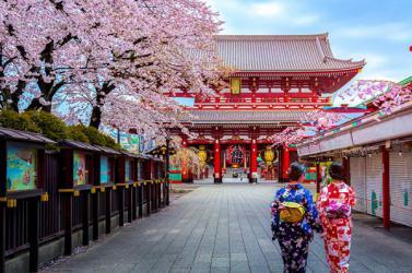 NHẬT BẢN mùa hoa anh đào: OSAKA - KYOTO - NAGOYA - HAKONE - TOKYO
